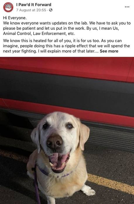 The organisation posted an image of the beautiful pooch (Credit: I Paw'd It Forward/Facebook)